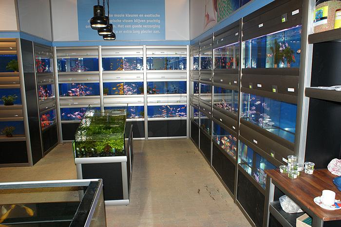 Opstelling wandstelling en waterplantenbak bij nieuwbouw tuincentrum