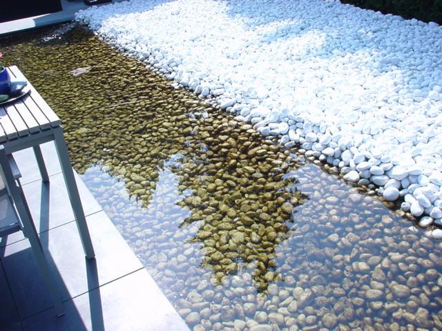 Foto 02 Vijver in de oude situatie, probleem waterkwaliteit (9)