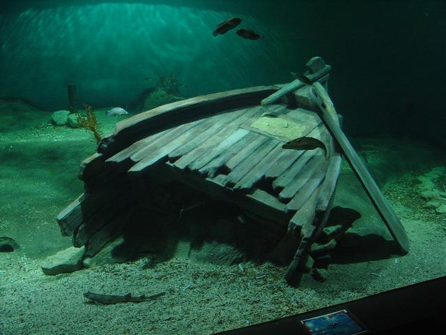 Oosterschelde aquarium Aquapolis Neeltje Jans