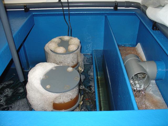 Filtertechniek kreeftenopslag bewaarsysteem voorfilter en eiwitafschuimers