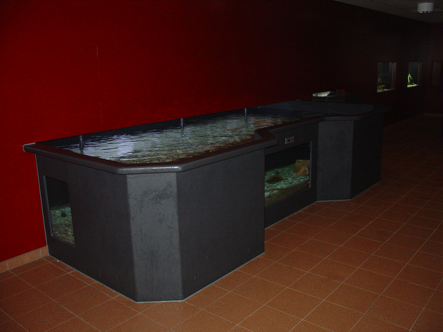 Roggenbak Aquapolis Neeltje Jans