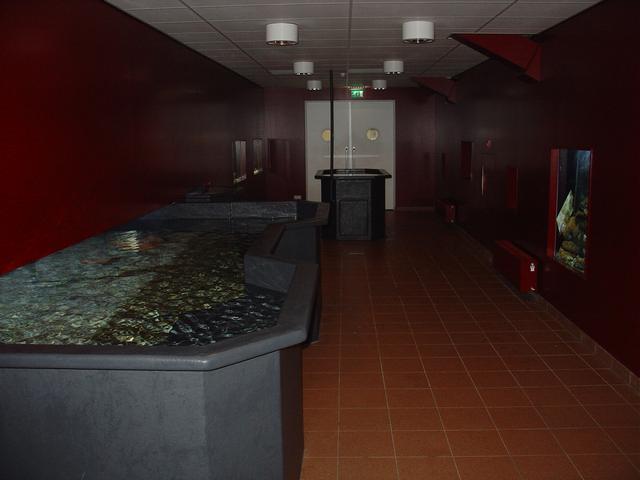 Oosterschelde showaquaria Aquapolis Neeltje Jans