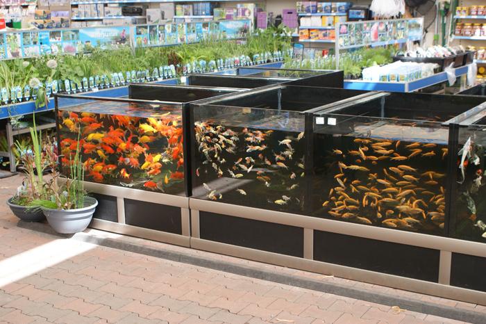Foto 02 Opstelling Vijverbewaarsysteem Bij Nieuwbouw Tuincentrum 1