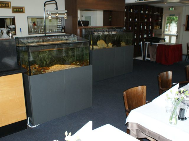 Foto 02 Standaard Homarium Bij Een Restaurant