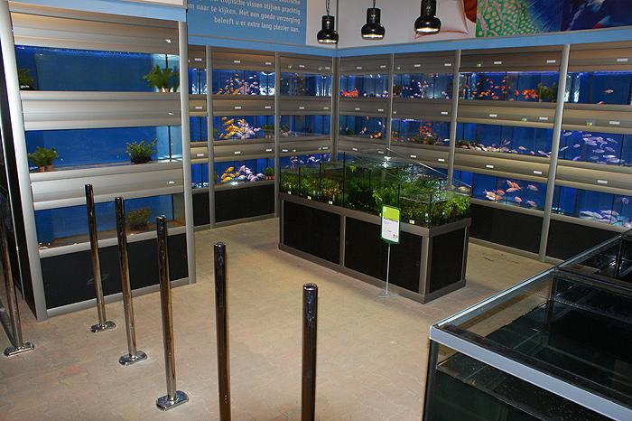 Foto 07 Opstelling Wandstelling En Waterplantenbak Bij Nieuwbouw Tuincentrum (1)